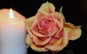 Cami Rinta Car Accident – Obituary: Cause of death!
